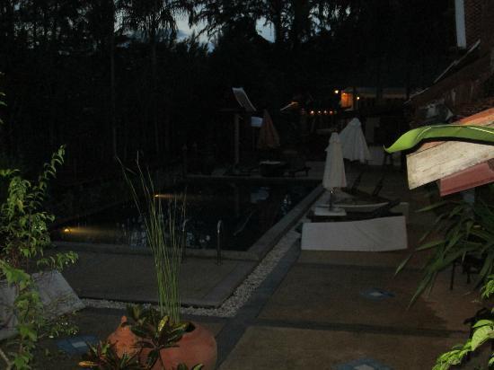 Seapines Villa Liberg : la piscina