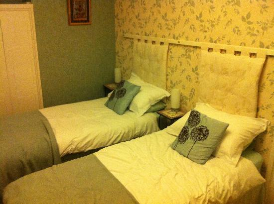Plas Efenechtyd Cottage B&B: Twin Room!