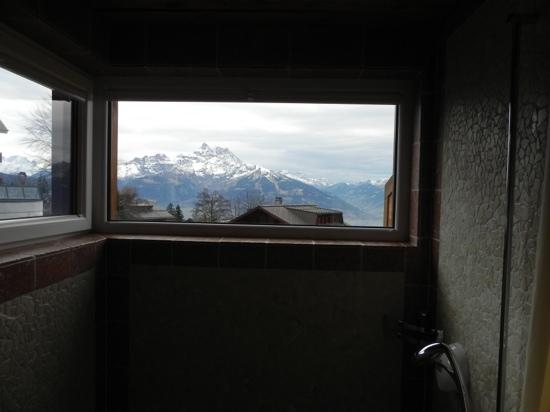 Alpe Fleurie Hotel & Residence: shower view