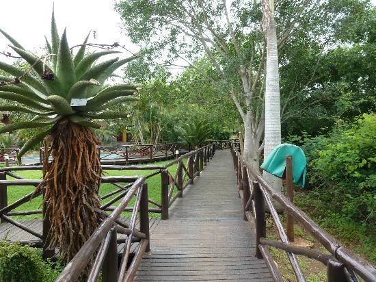 Mkuze Falls Lodge: Walkways
