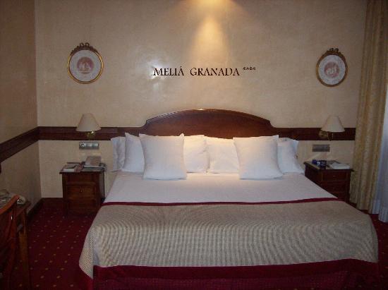 เมเลีย กรานาดา โฮเต็ล: MELIA GRANADA