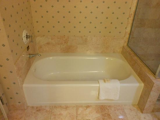 Paris Las Vegas: tub
