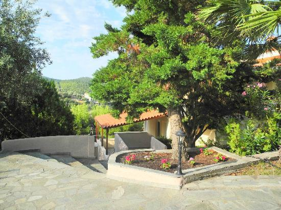 Kelyfos Bungalows & Suites: Hotel grounds