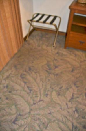 Hale Maluhia Country Inn: That dark spot is the front door carpet.......which hasn't been cleaned in who knows when.  Smel