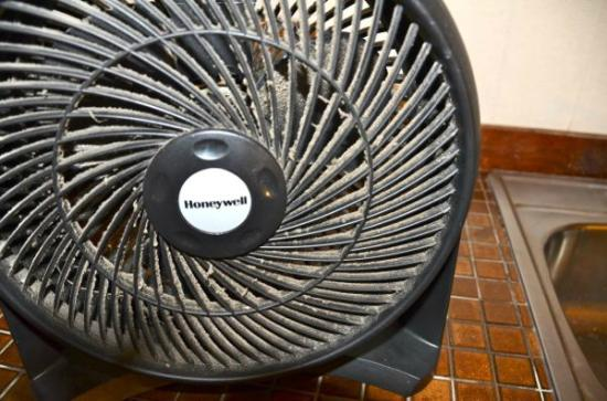 ‪‪Hale Maluhia Country Inn (house of peace) Kona‬: Do you have a filthy fan like this in your bedroom?‬