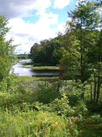 Adirondack Scenic Railroad: Moose River from the train