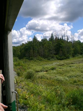 Adirondack Scenic Railroad: Scene from the train