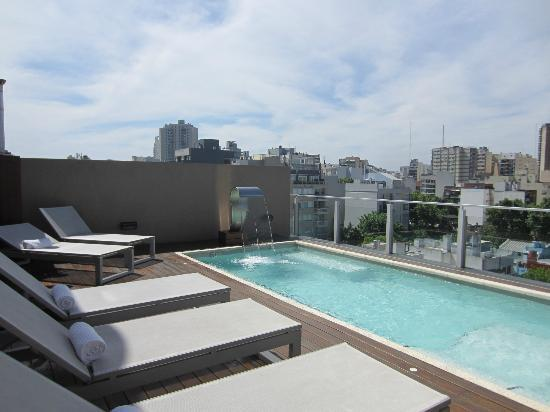Fierro Hotel Buenos Aires: Rooftop pool (there is also a sauna)