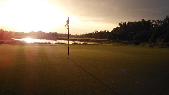 Tiburón Golf Club: #8 green Black course
