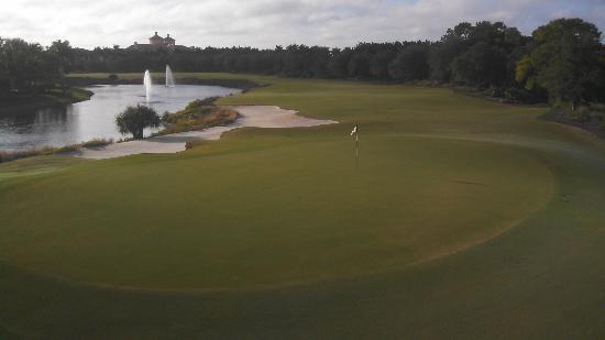 Tiburón Golf Club: 14 gold course