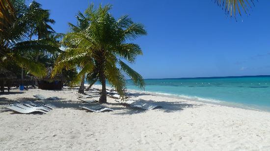 Iberostar Punta Cana : Saona
