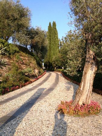 Residence Borgo degli Ulivi: Auffahrt