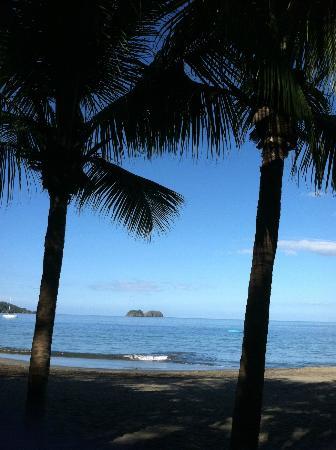 Villas Sol Hotel & Beach Resort: the beach! this is where you will find pura vida massages