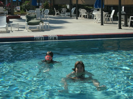 Claremont Kissimmee Hotel : Beautiful Heated Pool - even in the 60's
