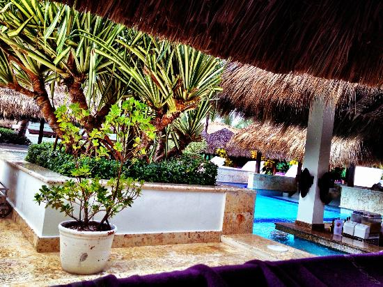 Paradisus Punta Cana Resort: Royal Service pool from under a Palapa bed