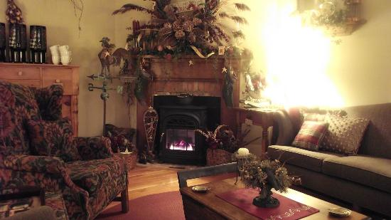 Historic Davy House B&B Inn: Our Parlor...a cosy spot waiting for you this winter