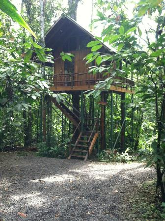 Tree Houses Hotel Costa Rica: Our Tree House - One of the Six