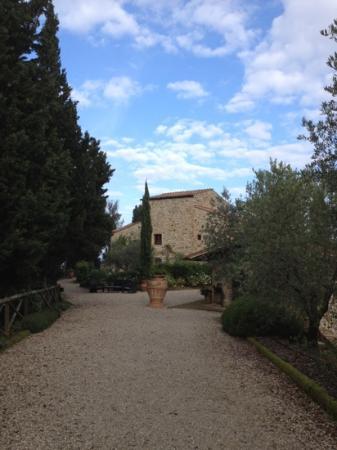 Tenuta Sant'Ilario: tenuta