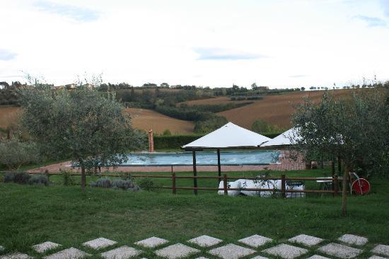 La Contea: pool