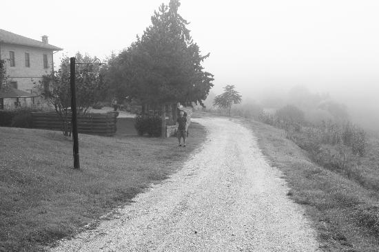 La Contea: Entrance
