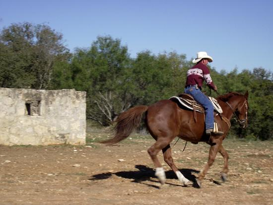 Mayan Dude Ranch: HORSE RIDES