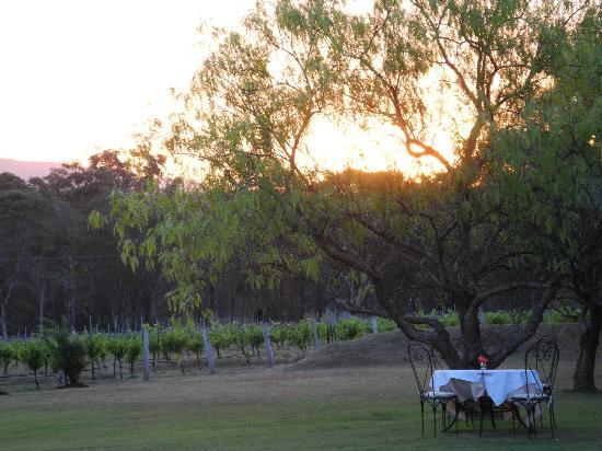 Restaurant Botanica : sunset at Botanica