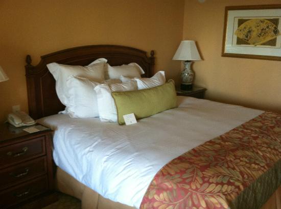 薩拉索塔麗思卡爾頓酒店照片