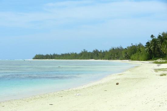 بارادايز كوف لودجز: looking north from our beach 