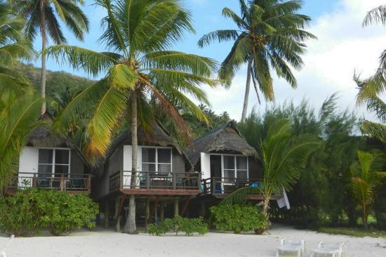Paradise Cove Lodges : Our bungalow on right at the end of the row