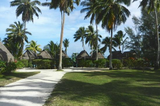 Paradise Cove Lodges: grounds always nicely maintained
