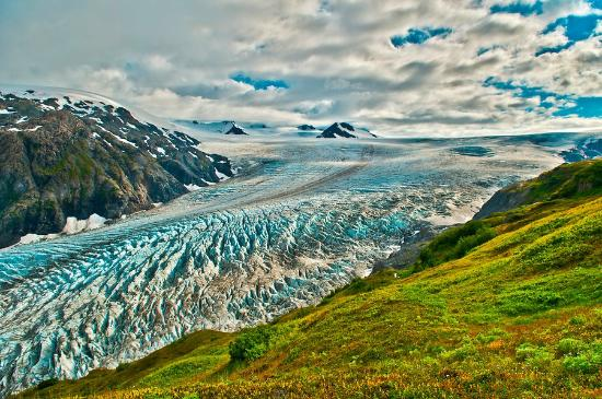 Kim's Forest Bed and Breakfast : Harding Icefield
