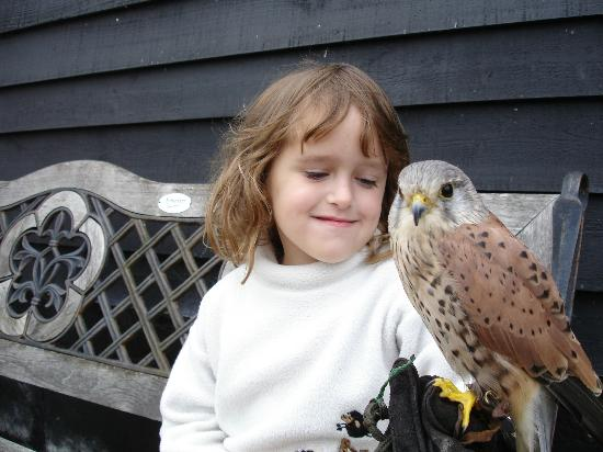 Yaraks Birds Of Prey Falconry Centre: Eldest with Bracken i think, long time ago..2007