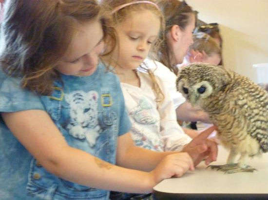 Yarak Bird of Prey: Kids with another baby owl :)