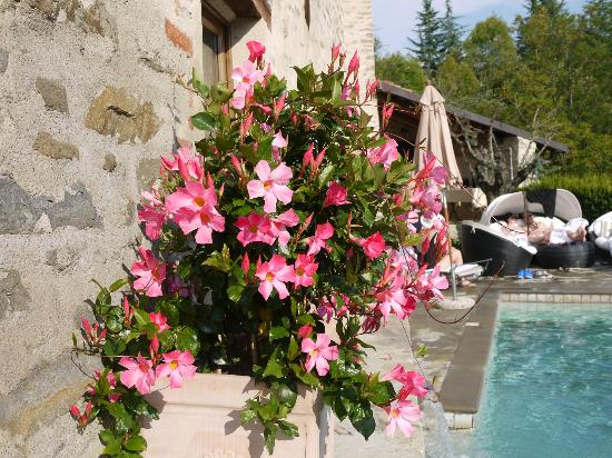 Hotel Castello di Sinio: In the pool area