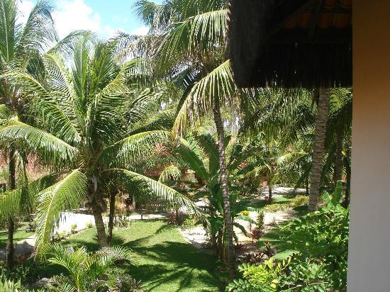 Pousada Tabapitanga: Los jardines, vistos desde la habitación