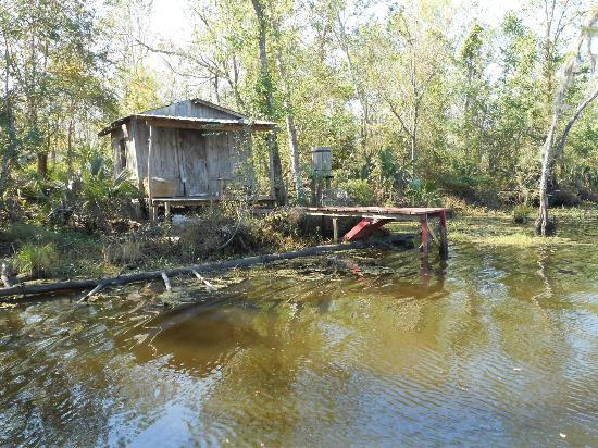 Jean Lafitte Swamp Airboat Tours