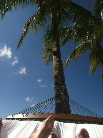 Casa Marina, A Waldorf Astoria Resort: Gorgeous property - obligatory feet shot from our hammock!