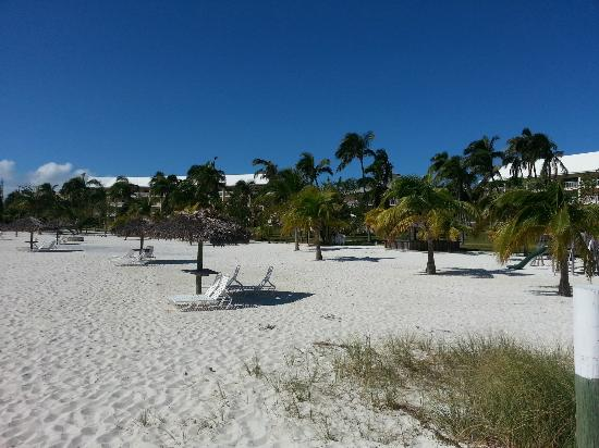 Abaco Beach Resort and Boat Harbour Marina: Beach shot