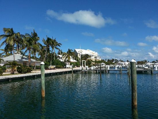 Abaco Beach Resort and Boat Harbour Marina: Marina shot