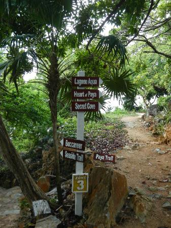 Paya Bay Resort: Pathways of Paya Bay