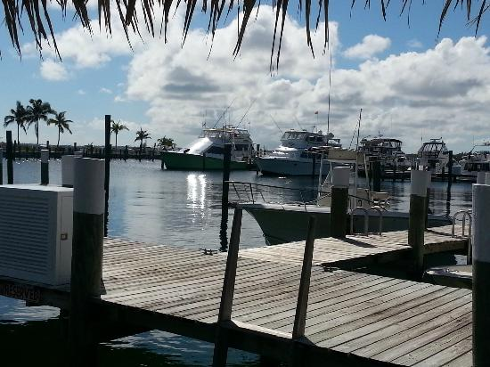 Abaco Beach Resort and Boat Harbour Marina: Marina