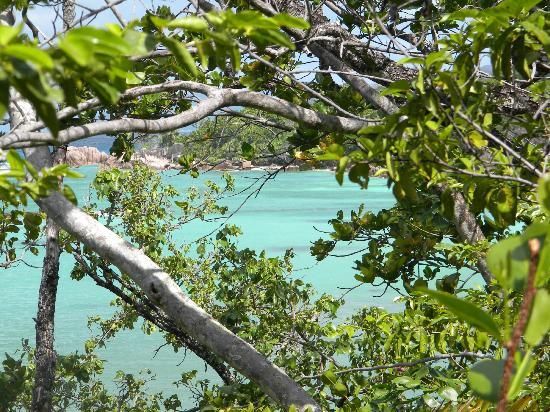 Curieuse Island照片