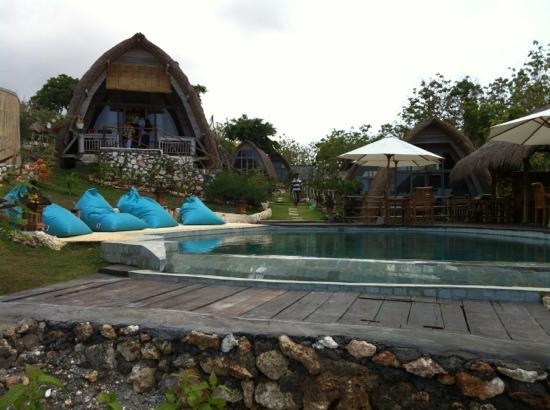 Milo's Home: pool