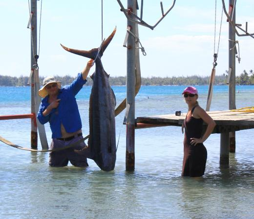 Bora Bora Fishing Paradise Lodge: Daniel alias Hussein Bolt avec un marlin bleu