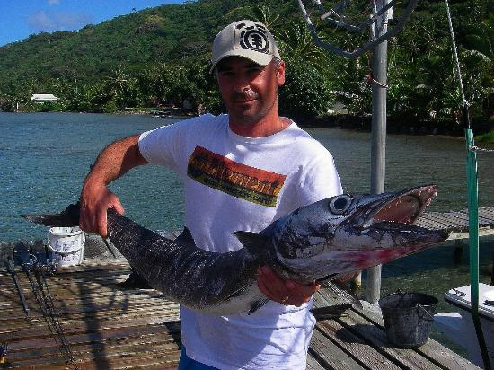 Bora Bora Fishing Paradise Lodge: grand barracuda au leurre