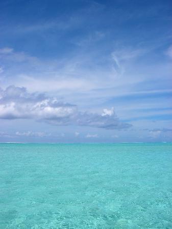 Bora Bora Fishing Paradise Lodge : le lagon