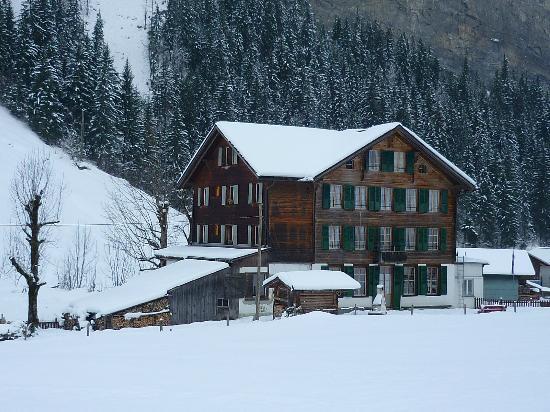 The Alpenhof: The Alpenhof - its snowing! 