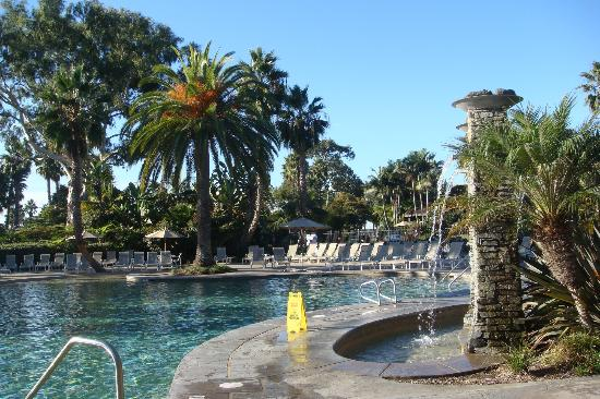Paradise Point Resort & Spa: Main pool and surrounding trees