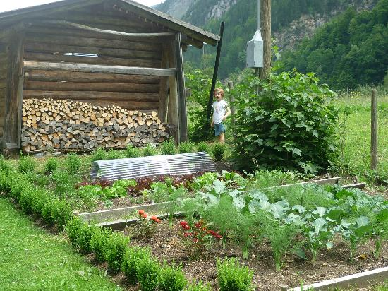 The Alpenhof: Vegetable garden