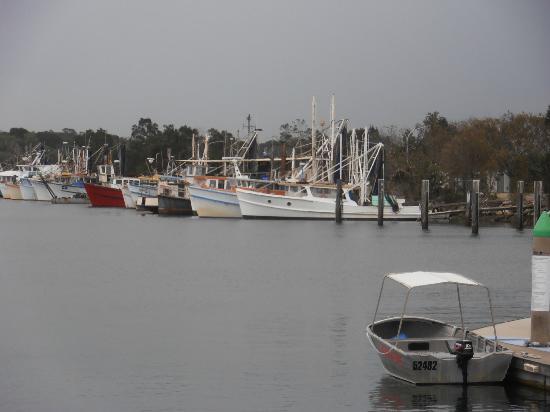 yamba fishing fleet picture of clubyamba yamba tripadvisor rh tripadvisor com au